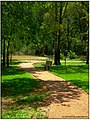 Bench along the path - Flickr - pinemikey.jpg