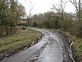 Bend in the road to Upperton - geograph.org.uk - 1734811.jpg