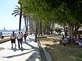 Benidorm - panoramio (58).jpg