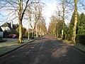 Bentley Road - early spring - geograph.org.uk - 2287921.jpg