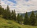 Bergtocht van Tschiertschen (1350 meter) via de vlinderroute naar Furgglis 01.jpg