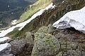 Bergtour hochweberspitze 89300 2015-06-08.JPG