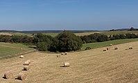 Bij Vogelsang, panorama met hooibalen foto5 2016-09-09 15.17.jpg