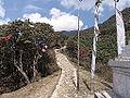 Bikay Bhanjyang 002.JPG