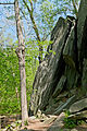 Billy Goat C Trail 1.jpg
