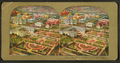 Bird's view, World's Fair, St. Louis, from Robert N. Dennis collection of stereoscopic views.png