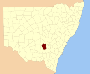 Bland County, New South Wales - Location in New South Wales