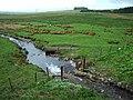 Blea Beck - geograph.org.uk - 173668.jpg