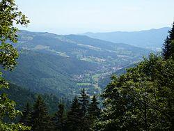 Blick ins Münstertal 140707.JPG