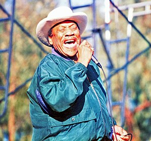 Bobby Bland - Bland at the Long Beach Blues Festival, 1996