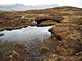 Boggy ground east of Beinn Edra - geograph.org.uk - 780728.jpg