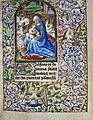 Book of Hours of Simon de Varie - KB 74 G37 - folio 012r.jpg