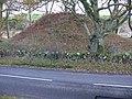 Boreland Motte.jpg