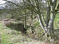 Boundary stream, Baildon - geograph.org.uk - 762044.jpg