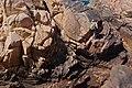 Bréhat 22 Escalade Paon 2010.jpg
