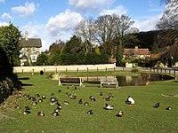 Brantingham Village Pond - geograph.org.uk - 713893.jpg