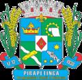 Brasão de Pirapetinga.png