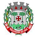 Brasão de Salvador do Sul.jpg