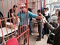 Breakfast at a refugee camp in Edirne, Turkey, September 23, 2015 d.jpg
