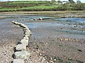 Bridge and stepping stones crossing the Gann - geograph.org.uk - 1540196.jpg