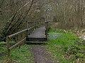 Bridge over bog - geograph.org.uk - 1219438.jpg