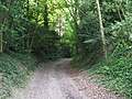 Bridleway NE of Windlesham House School - geograph.org.uk - 1424108.jpg