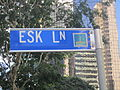 Brisbane Street Sign - Esk Lane - City Logo and No Numbers.jpg