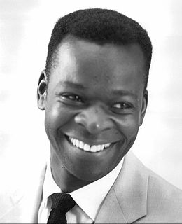 Brock Peters American actor