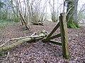 Broken gate, Pits Wood - geograph.org.uk - 1704229.jpg