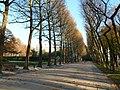 Brussels-Jubelpark - Parc du Cinquantenaire (3).JPG