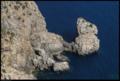 Buiobuione - palma de maiorca - Cap de Formentor.tif