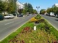 Bulevardul Unirii - panoramio (3).jpg