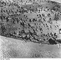 Bundesarchiv Bild 195-0836, Rheinbefliegung, Dormagen - Zons.jpg