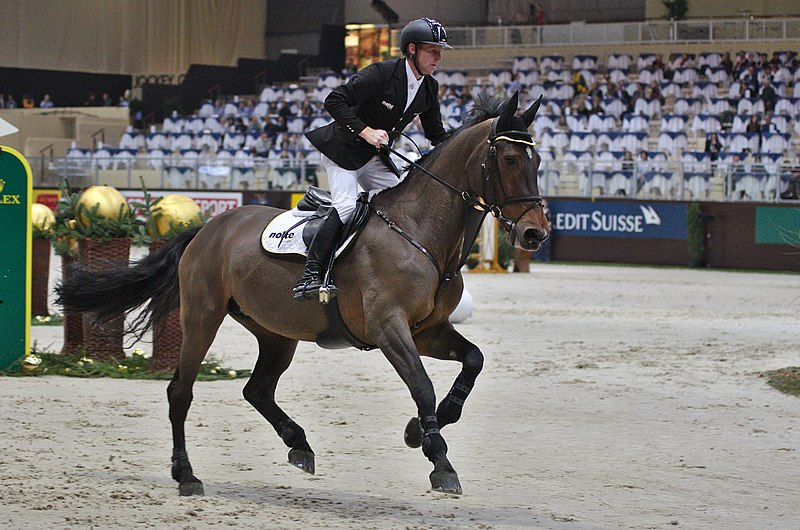 La propulsion et la force déployées par le cheval ne sont pas mauvaises, mais l'action des mains est encore une fois, très forte.