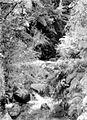 COLLECTIE TROPENMUSEUM Een beek in het bos op de vulkaan Papandayan TMnr 10027521.jpg