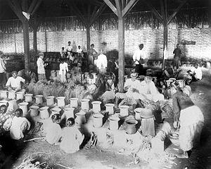 Pindang - Pindang making in Blimbing, East Java circa 1920s.