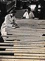 CSIRO ScienceImage 2090 Specimens for timber testing.jpg