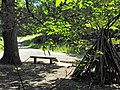 Cabanon de fortune sur la route du Faîte (forêt de Montmorency) - panoramio.jpg
