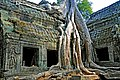 Cambodia-2559 - Lara where are you? (3609698807).jpg