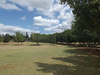 City of Ipswich - Cameron Park at Booval, 2015