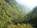 Caminho dos tropeiros - panoramio.jpg
