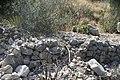Camino del Cuatro, Sierra Zapalinamé, Saltillo Coahuila - panoramio (51).jpg