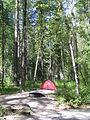 Camping in Glacier Park (4419727967).jpg