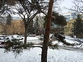 Campus Snow 3 (23802144994).jpg