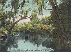 Ormond Beach, Florida - Tomoka River c. 1905