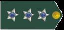 Capitão.png