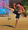 Capoeira Enschede aan Zee (6847459820).jpg