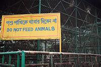 Captive monkey at Chittagong Zoo (3181018749).jpg