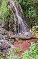 Cascade de Saunhac 17.jpg