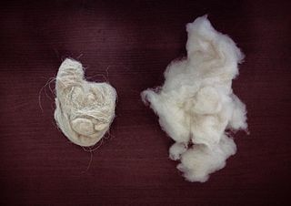 regional name in Ladakh and Kashmir for the fine wool of the cashmere goat